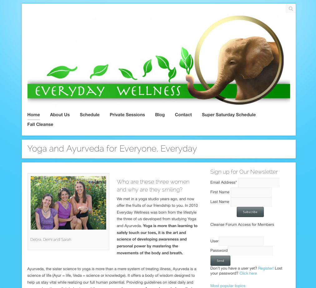 Everyday Wellness Ayurveda Yoga blog WordPress Design